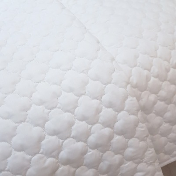 Hotel Mattress Protector with band WH Q